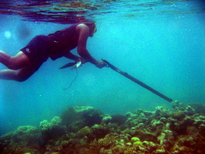PaulSpearfishing