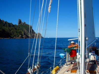 Sailing around Bream Head