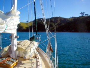 west side of Mimiwhangata