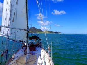 SailingWhangareiHeads