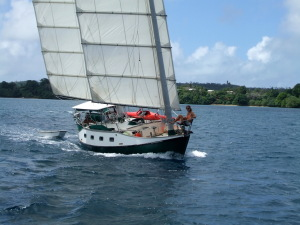 Willow sailing through the Vava'u Group