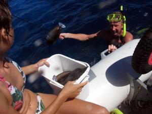 IvonnaMathewFish
