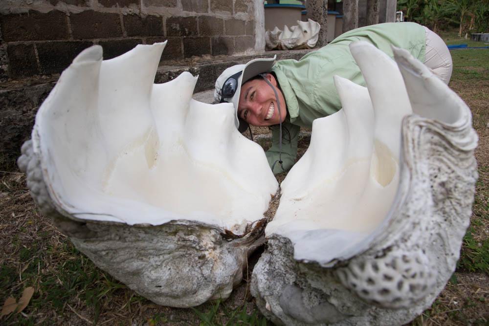 Big ass shell