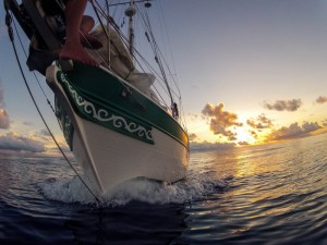 Gopro off the bow as I motored away from the setting sun
